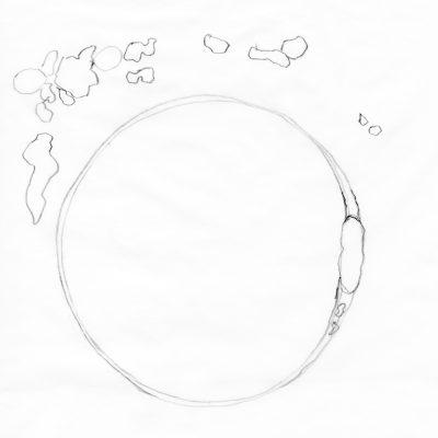 a sketch of a human fertilized egg